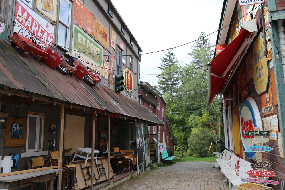 Picture of alley with signs in the Town of Codwater Ontario