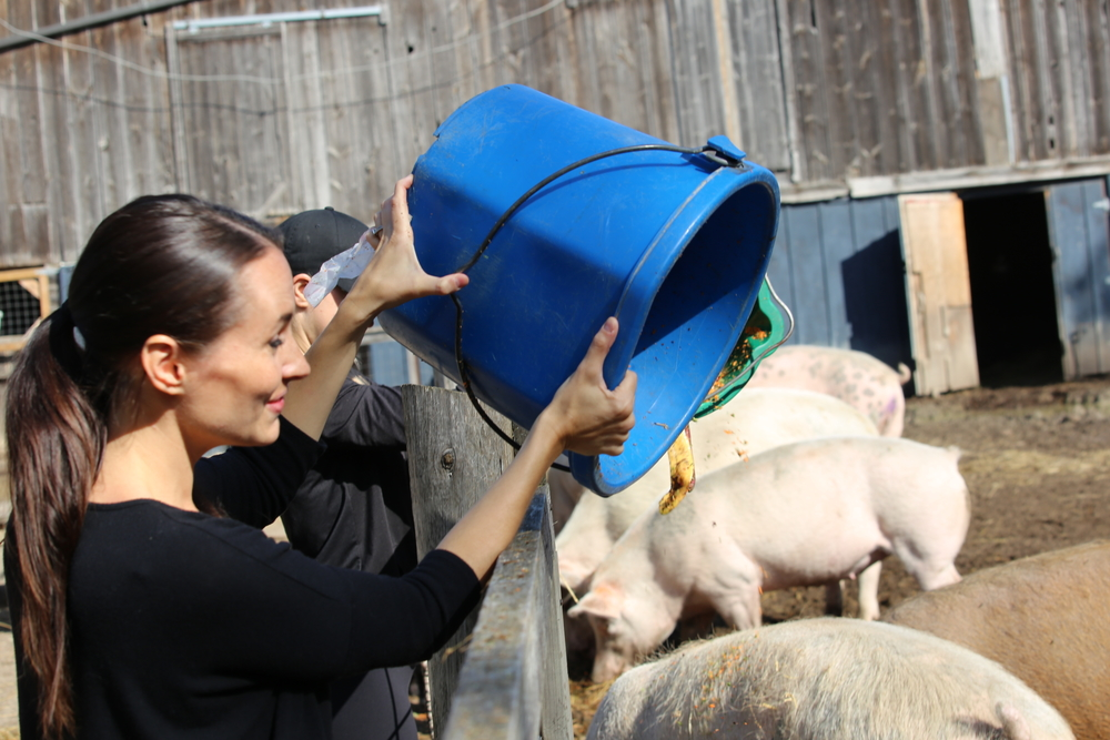 Ripe Owners Meghan & Lindsay feeding animals pulp at Wishing Well Animal Sanctuary