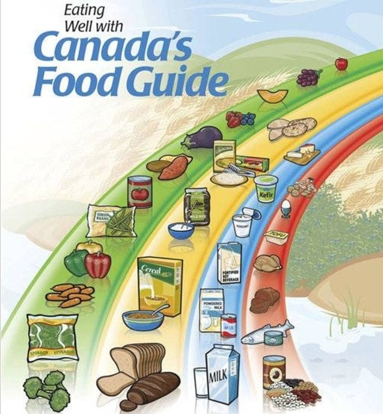 New canada food guide drops meat and milk groups.